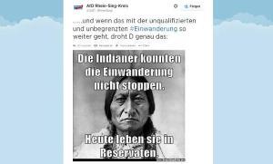 afd-tweet auf focus.de